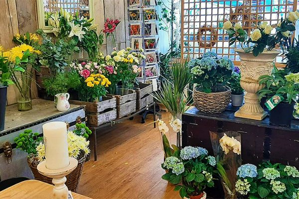 Serjeants-Family-Florist-Southend-Wedding-Flowers-Occasional-Flowers-Wreaths-Bouquets-Funeral-Flowers-Gift-Flowers-Free-Delivery-1