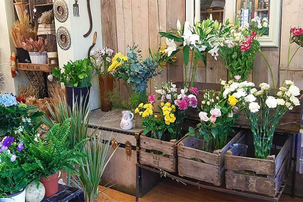 Serjeants-Family-Florist-Southend-Wedding-Flowers-Occasional-Flowers-Wreaths-Bouquets-Funeral-Flowers-Gift-Flowers-Free-Delivery-2