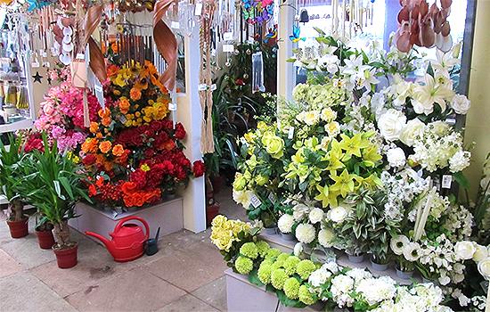 Garden-Centre-Southend-Tea-Room-Plants-Gardening-Tools-8