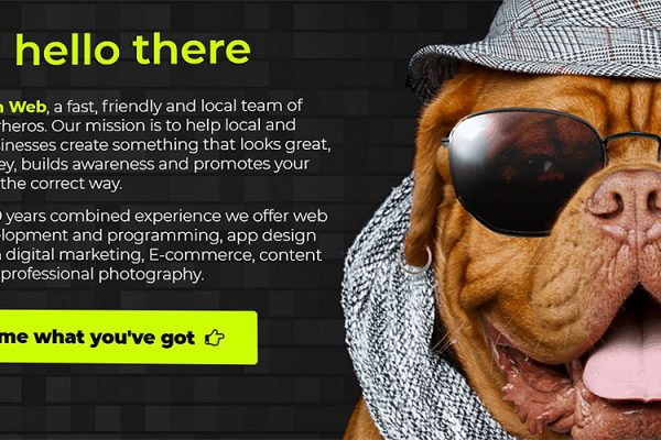 Nash-Web-Developement-Digitial-Marketing-Photography-Content-Writing-Services-Essex2 (1)