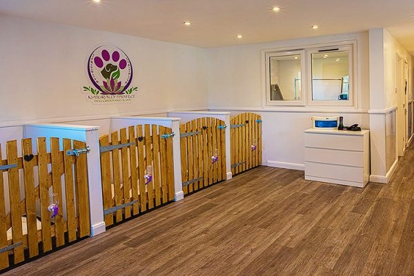 Naturally-Pawfect-Dog-Grooming-Spa-Dog-Grooming-Dog-Spa-Vegan-Day-Packages-Dog-Salon-Dog-Hydrotherapy-Ethical-And-Organic-Grooming-Southend-Essex-2