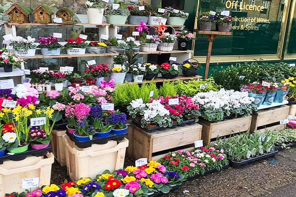 The-Flower-Stores-Florist-Wedding-Flowers-Funeral-Occasional-Flowers-Banners-Gift-Bags-Bouquets-Southend3